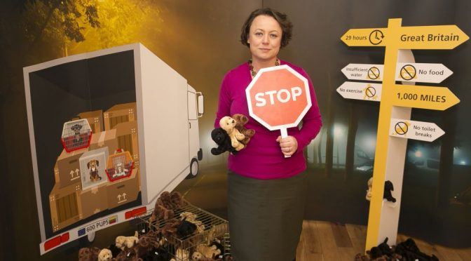 Newcastle MP and Dogs Trust join forces against puppy smuggling